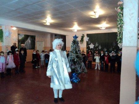 Когда Новогодняя елка не радует (фото, видео)