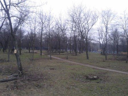 Городская власть уничтожает центральный парк Никополя