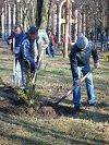 В Нікополі розпочинається проведення єдиного дня санітарного очищення та благоустрою міста «ЧИСТИЙ ЧЕТВЕР»