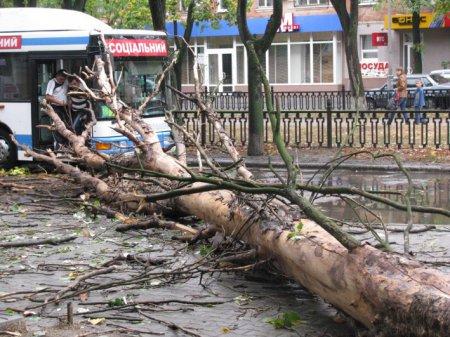 В Никополь неожиданно пришла осень (фото, видео)