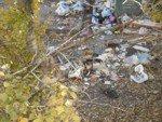 Переходный период в системе вывоза мусора (видео Р.Токарь)