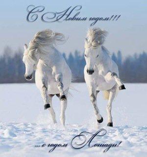 Никополь - новогоднее поздравление мэра и экс-мэра города Никополь